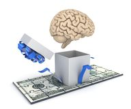 Human brain and dollar banknote Stock Images
