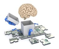 Human brain and dollar banknote Royalty Free Stock Image