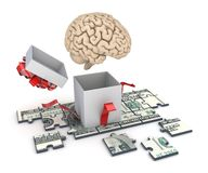 Human brain and dollar banknote Royalty Free Stock Images