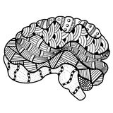 Human Brain doodle Royalty Free Stock Photography