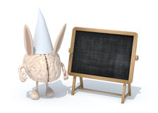 Human brain with ears Dunce and hat in front of a blackboard Royalty Free Stock Photos