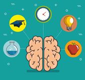 Human brain education thinking concept. Vector illustration graphic design Stock Images