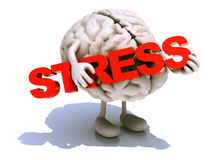 Human brain that embraces word stress. Human brain with arts that embraces a word stress, 3d illustration Stock Image