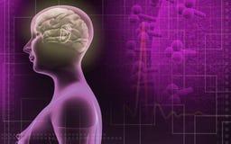 Human brain in a female human body Stock Photo