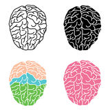 Human brain. Flat design, vector illustration, vector stock illustration