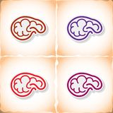 Human brain. Flat sticker with shadow on old paper. Vector illustration stock illustration