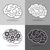 Human brain and gears icon image Royalty Free Stock Image