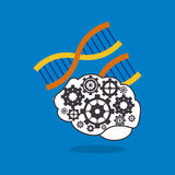 human brain with gears inside and dna strand icon image Stock Photography