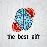 Human brain gift Royalty Free Stock Image