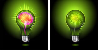 Free Human Brain Glowing Inside Of Light Bulb, Idea Concept Royalty Free Stock Image - 142583666