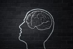 Human brain. Human hand drawing brain on black chalkboard Royalty Free Stock Image