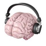 Human brain with headphones Royalty Free Stock Photo