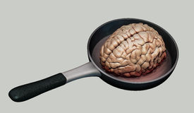 Human brain on hot pan illustration. Isolated Royalty Free Stock Photo