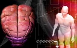 Human brain with human body Stock Photography