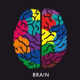 Human brain icon Stock Photography