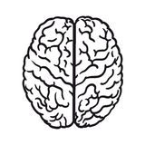 Human brain icon. Abstract image of a human brain on a white background stock illustration