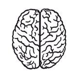 Human brain icon Royalty Free Stock Image