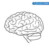 Human brain icon, vector illustration Royalty Free Stock Photo