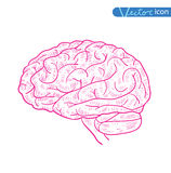 Human brain icon, vector illustration Royalty Free Stock Photography