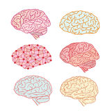 Human brain icon, vector illustration Stock Photo