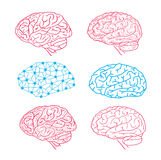 Human brain icon, vector illustration. Stock Photography