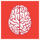 Human brain illustration on red background Stock Photo