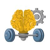 Human brain intelligence and creativity cartoons. Brain bulb light shape with gear and weights vector illustration graphic design stock illustration