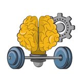 Human brain intelligence and creativity cartoons. Brain bulb light shape with gear and weights vector illustration graphic design vector illustration