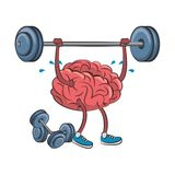 Human brain intelligence and creativity cartoons. Brain with lifting weight and dumbbells cartoons vector illustration graphic design vector illustration