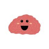 Human brain intelligence Stock Photo