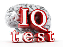 Human brain and IQ test text isolated on white background. 3D illustration.  Stock Image