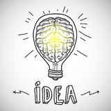 Human brain in lightbulb sketch Stock Photo