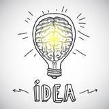 Human brain in lightbulb sketch Stock Photo