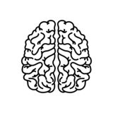 Human brain linear icon. Thin line illustration. Nervous system organ. Contour symbol. Vector isolated outline drawing stock illustration