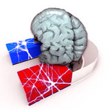 Human Brain and Magnet Royalty Free Stock Images