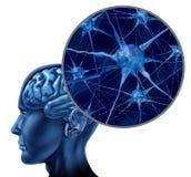 Human brain medical symbol Royalty Free Stock Photos