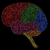 Human brain with multicolored circuit board elements. Abstract human brain with multicolored circuit board elements Stock Photography