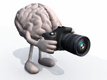 Human brain photographer Stock Image
