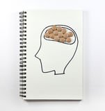Human brain with pills on notebook. Medical Royalty Free Stock Photography