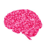 Human brain, pink dream, vector abstract backgroun Royalty Free Stock Photo