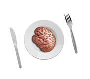 Human brain on plate Royalty Free Stock Images