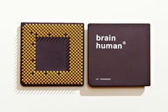 Human brain-processor Stock Photography