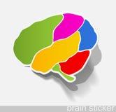 Human brain, realistic design elements Stock Image