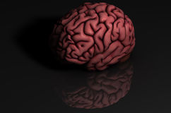 Human brain with reflection. Human brain oblique 3D illustration with reflection on black surface and background stock illustration