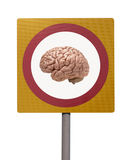 Human brain on road sign Stock Photo