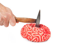 Human brain rubber with hammer blow and blood spill Royalty Free Stock Image
