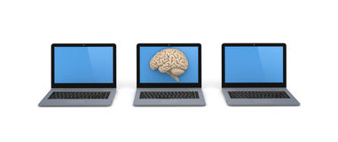 Human brain on a screen of laptop Royalty Free Stock Images