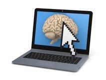 Human brain on a screen of laptop Stock Photos