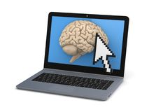 Human brain on a screen of laptop Stock Photography