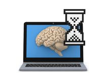 Human brain on a screen of laptop Royalty Free Stock Photo